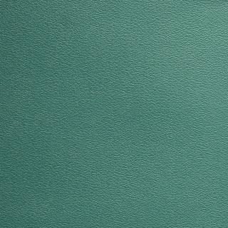 Esprit Aqua Green