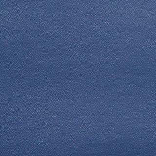 Esprit Blueberry
