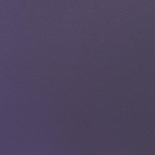 Esprit New Purple