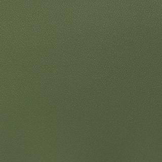 Esprit Olive Green