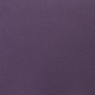 Esprit Purple Iris